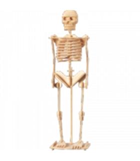 Livro + Puzzle 3D - Esqueleto - 401151