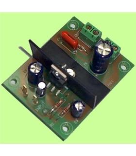 E-2 - Amplificador Mono 5W 6-15Vdc - E-2