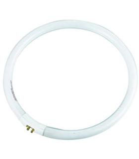 Lampada Circular T5 22W 230V 170mm - MX3062762